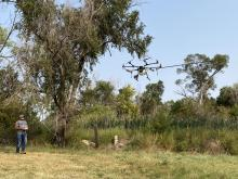 Wesley Prosser operates the drone in a hilly area where spraying can reach inaccessible invasive species.